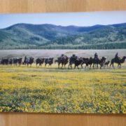 Mongolei-Karawane