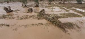 Flut in Khaliun im Aug. 2021